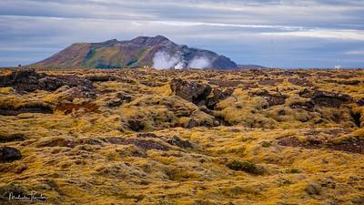 Grindavik Lava Fields