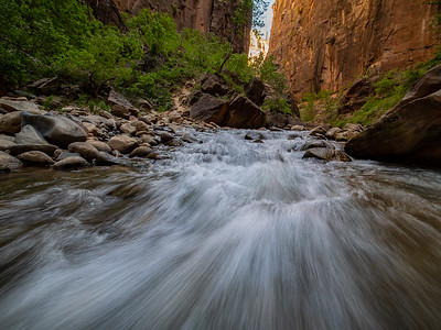 The Narrows | Zion National Park