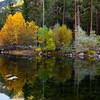 Wandering Through Autumn