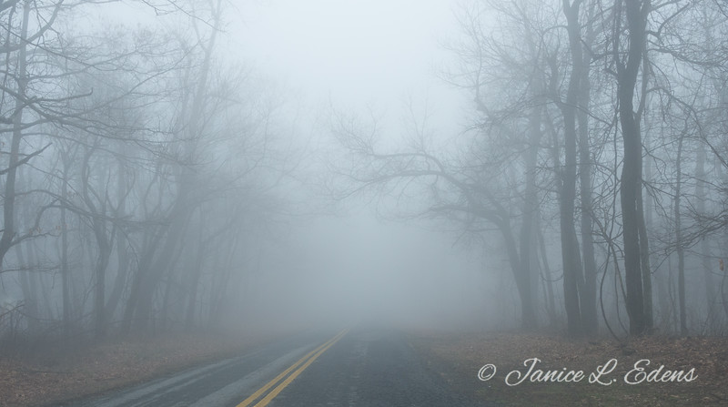 """Travelling through the Fog"""