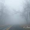 """Travelling through the Fog"""
