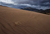 sand dunes storm