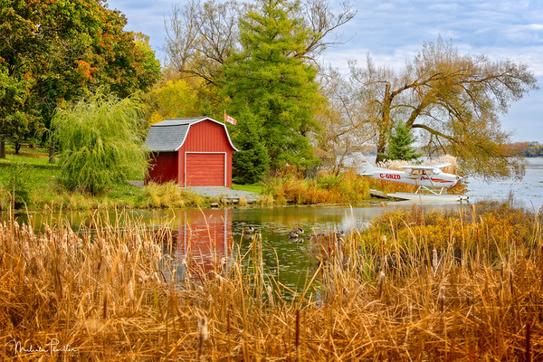 Wetlands Cottage