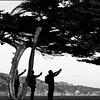"""""""Cypress Selfie"""""""