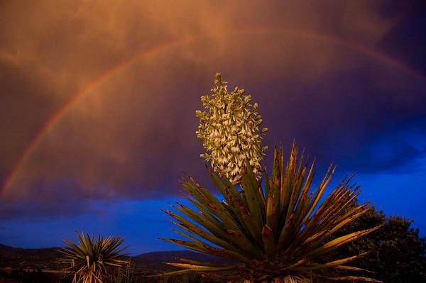 Santa Fe Sunset 2