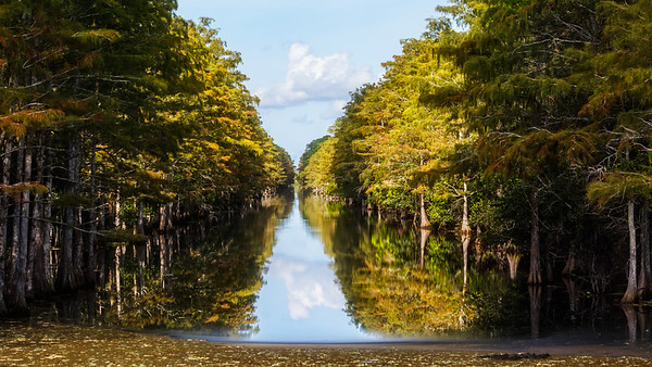 Grassy Water Canal