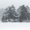 Stranded on Winter's Island