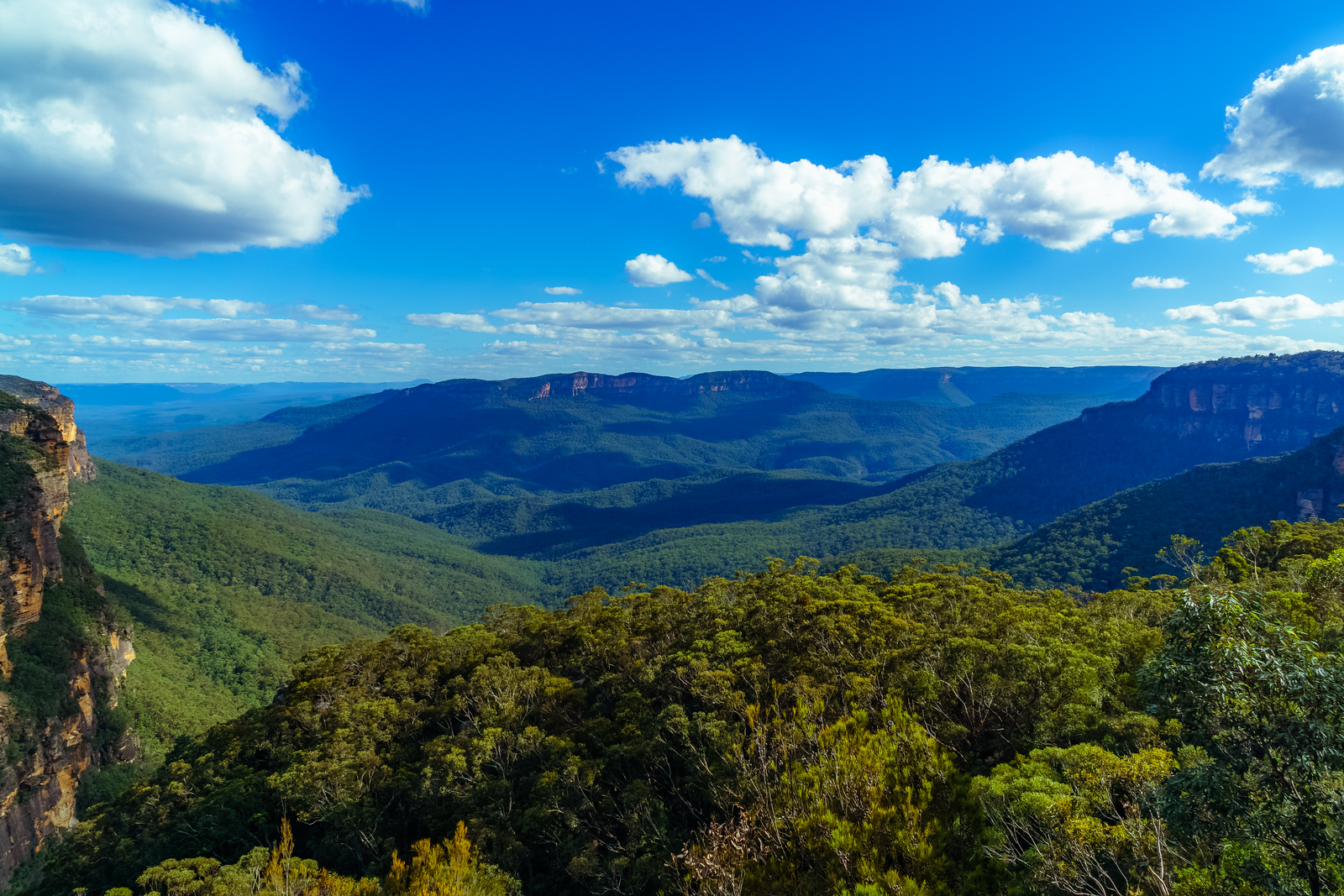 Blue Mountains National Park