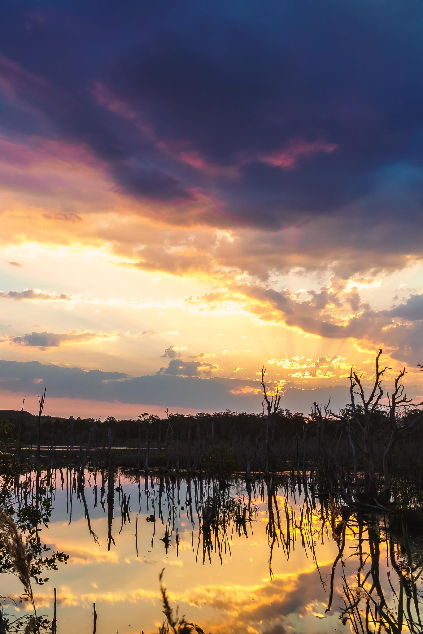 Teralba Sunset