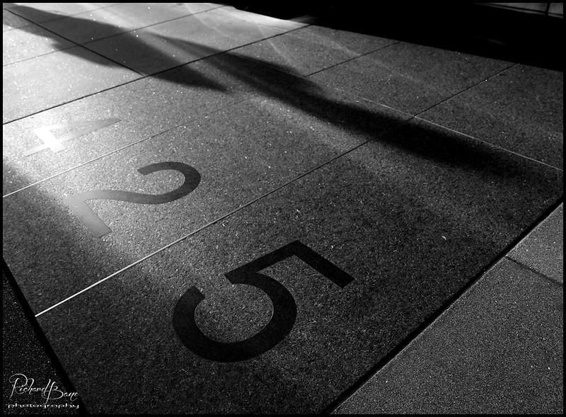 """""""425 Shadow"""""""