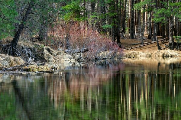Quiet Calm on the Merced