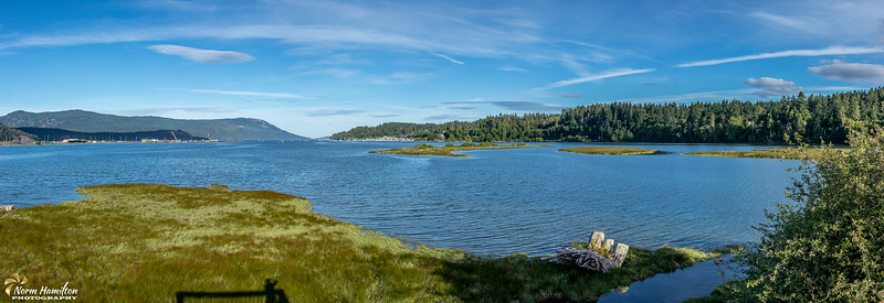 Panorama of Cowichan River Estuary