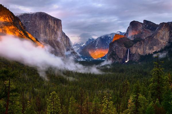 Spotlight on Yosemite
