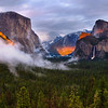 Spotlight on Yosemite