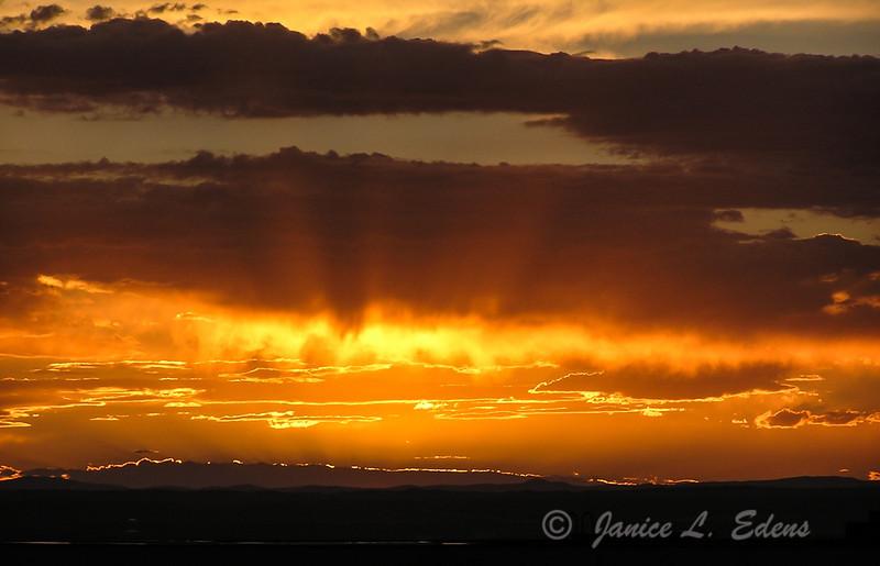 """""""Albuquerque Storm"""""""