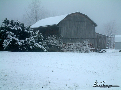 Barn in Winter - Magnet, IN