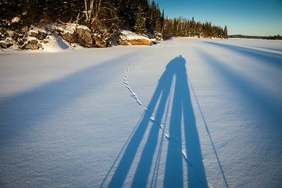 Shadows and wolf tracks
