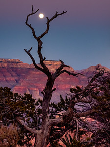 Moon in Sight Grand Canyon, Cover