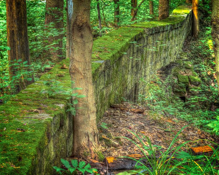 Old Culvert in the Woods-.jpg