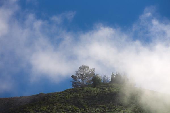 Fog Over a Hill