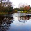 Reflections Duthie Park Aberdeen. John Chapman.