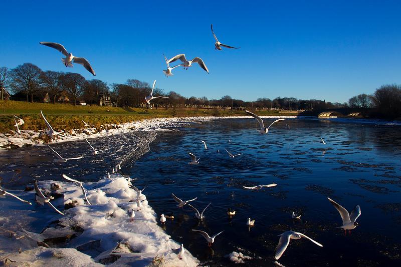 The River Dee Aberdeen. John Chapman.