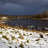 Buddy at the Riverside with Dark Clouds on the way. Aberdeen. John Chapman.