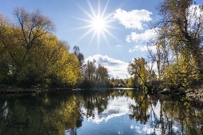 Boise River Sunstar
