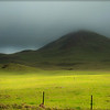 Hills, Waimea