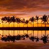 Reflected Palms Sunset