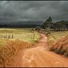 Road, Waimea