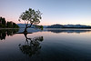 """Wanaka Reflection"""