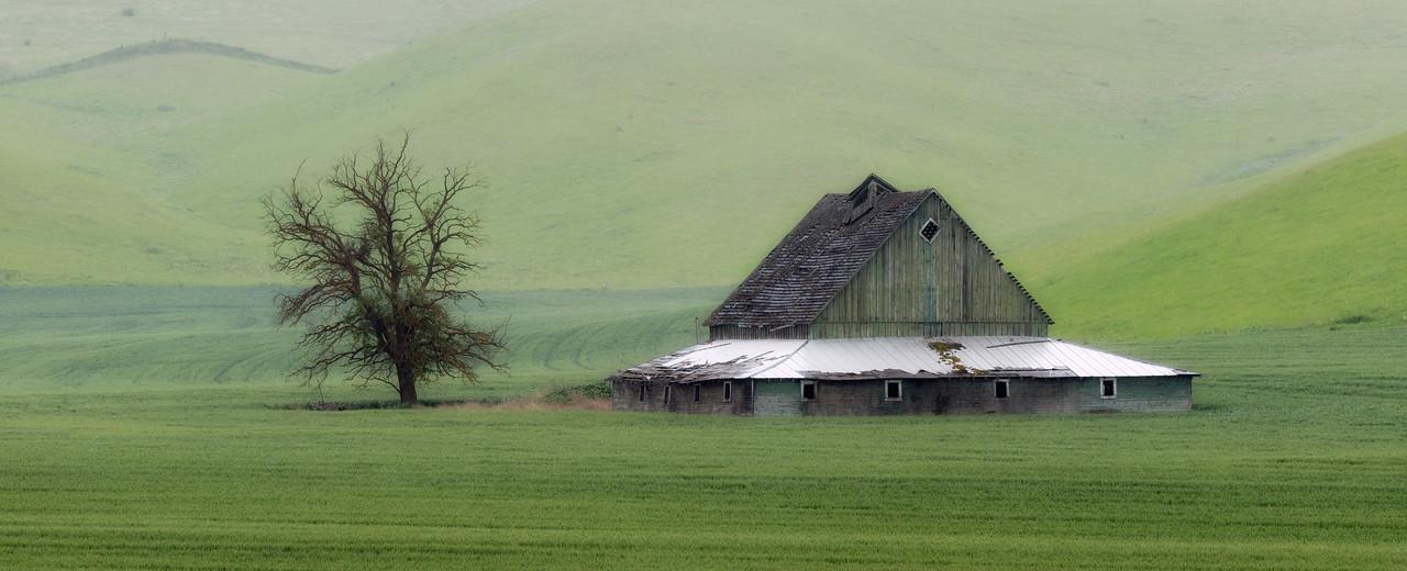 """""""The Green Barn"""""""