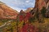 """Zion Canyon"""