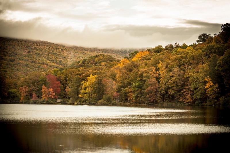 Fall at Virginia 1