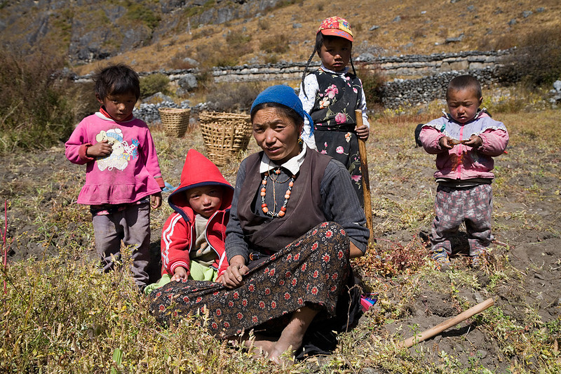 A woman and children harvesting potatoes above Langtang Village. / Langtang Himal, Nepal