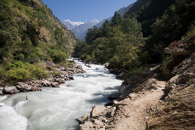 The Langtang Khola (river) as seen from the Lower Langtang Valley near the hamlet of Bamboo. / Langtang Himal, Nepal