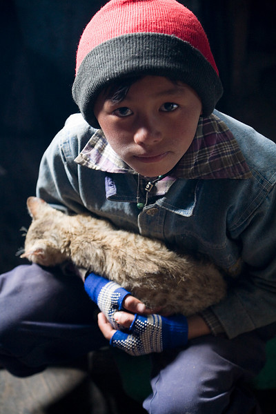 A young boy from the village of Kyanjin Gompa holding a kitten. / Langtang Himal, Nepal