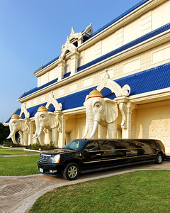 Savan Vegas Casino Limousine