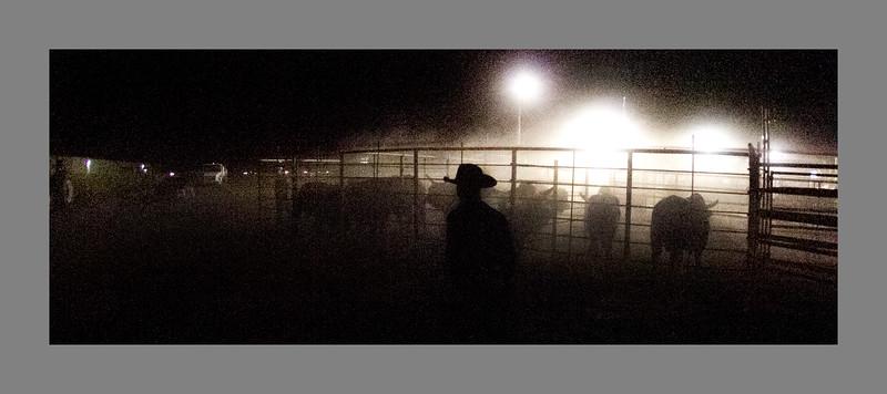 Friday Night Bull Riding @Bob Torrez