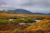 Lochan in Skye.