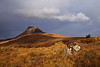 Stac Pollaidh. Assynt. Sutherland. Scotland.