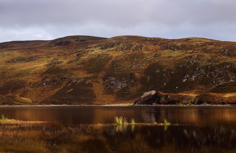 A Lochan in Assynt. Sutherland.