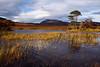 A Lochan in Sutherland. Scotland.