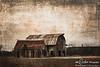 Rural Barns