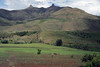 Sotho farmers plowing the fields with a team of cattle - in the foothills of the Thaba Putsoa Mountains - Maseru (district) - Lesotho.