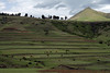 Sotho herdsman with their cattle along the cloud-shaded grassy terraces - with a sunlit conical peak in the background - Maseru (district) - Lesotho