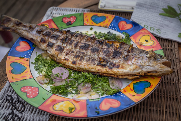 truite grillée | grilled trout