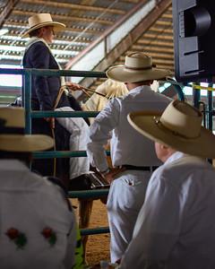 Mid Atlantic Peruvian Horse Show