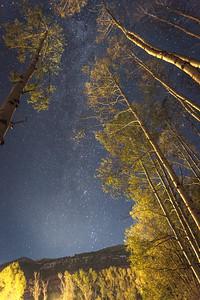 Aspen Milkyway Series I